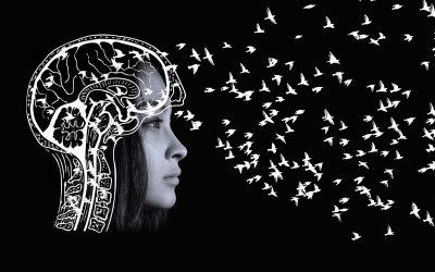 Libertà di pensiero o pensiero in libertà? Limiti e diritti